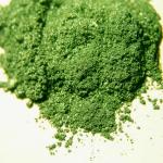 Sample of Forest Green Kolor Pearls.